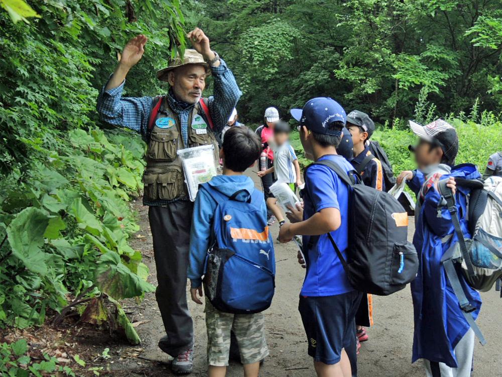 夏休み自然体験教室 ①青葉公園自然観察会